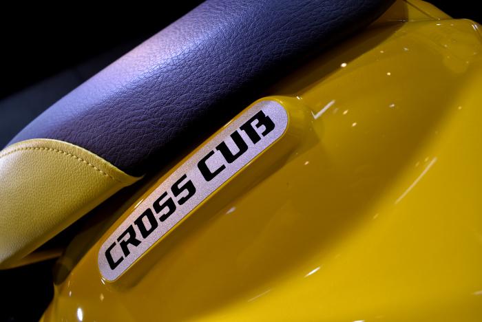 Cross Cub_8