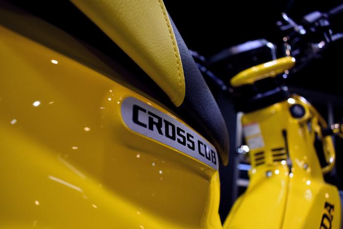 Cross Cub_7